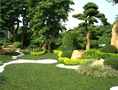 杭州植物墙_人造植物墙新闻_人造植物墙多少钱