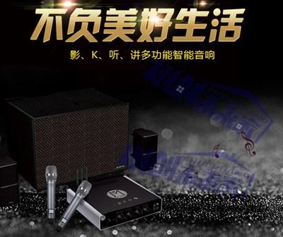安徽专业家庭KTV安装需要哪些材料 服务至上 上海树创智能科技供应