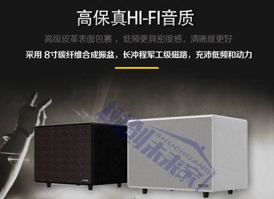 上海專業家庭KTV有專業團隊服務嗎 創造輝煌 上海樹創智能科技供應