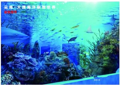 广东口碑好大型亚克力鱼缸,大型亚克力鱼缸