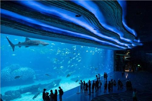 江西口碑好大型鱼缸可量尺定做,大型鱼缸
