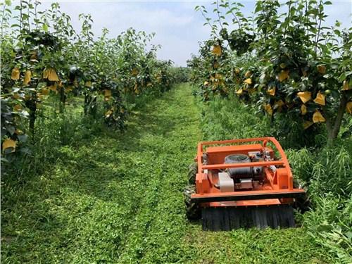四川自動除草機價格「上海漢興機電供應」