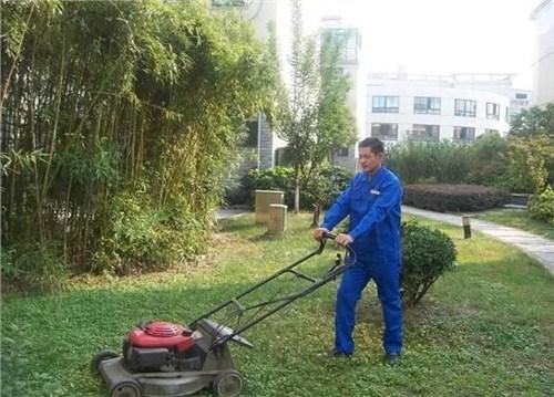地毯清洗 地毯清洗哪家好 地毯清洗厂家供应 朗仕洁供