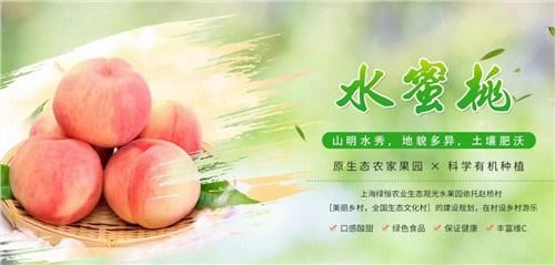 上海农家乐