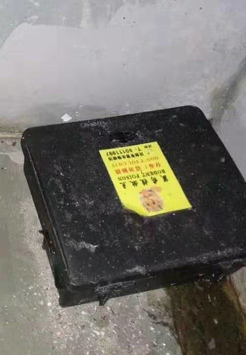 徐 家汇官方害虫防治杀虫灭鼠哪家强,害虫防治杀虫灭鼠