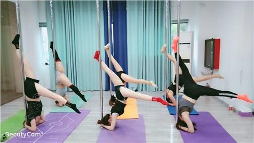 普陀区吊环舞舞蹈培训哪家强 苏州华翎舞蹈艺术培训供应
