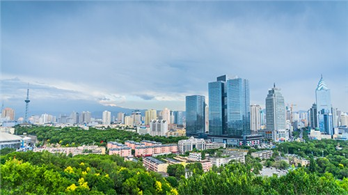 上海曲管压力平衡波纹补偿器销售价格,曲管压力平衡波纹补偿器