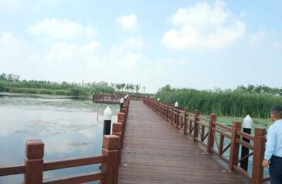 泰州水上浮桥 苏州伯利恒水上设施工程供应