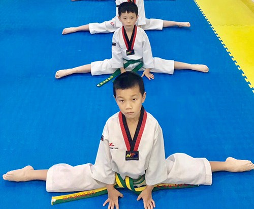 高新区跆拳道在线咨询「艺尚宝贝供应」