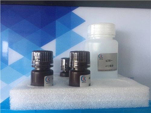 四川生物土壤过氧化氢酶S-CAT试剂盒 苏州格锐思生物科技供应