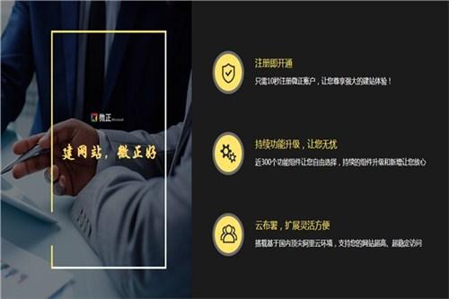 云南網站定制開發 值得信賴 云南微正科技