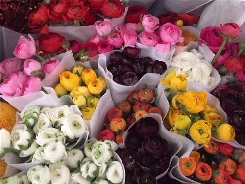 昆明鲜花批发市场地址 云南安学鲜花供应