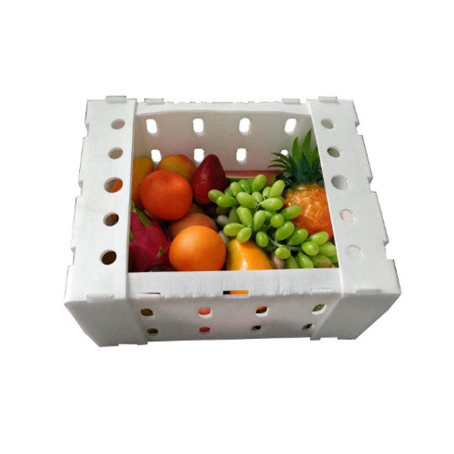 -fruit.jpg