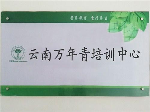 云南食疗调理师 云南万年青职业培训学校