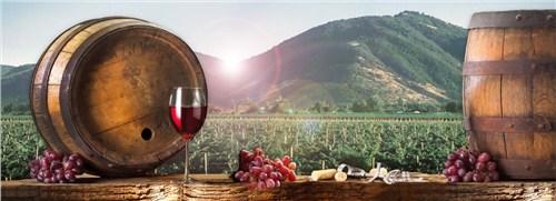 包头高品质红酒厂家 欢迎咨询 沃顿国际贸易供应