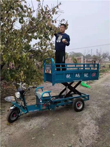 壽光摘果車廠家,摘果車
