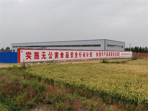 南阳宣传标语价格 南阳墙体广告制作中心