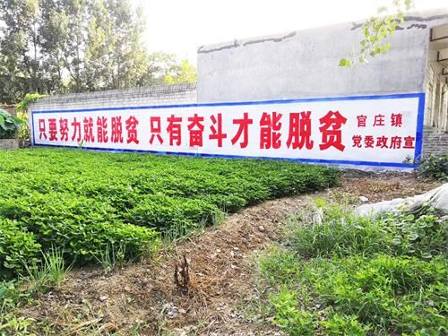 南阳大字设计价格 南阳墙体广告制作中心
