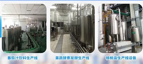 上海优质茶饮料生产线 抱诚守真 上海维殊机械科技供应