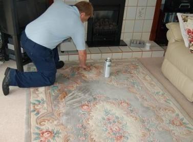 湖北高级地毯沙发清洗规格齐全 铸造辉煌 武汉宏通盛保洁服务供应