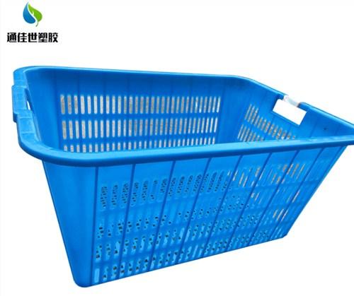 鄂州塑料周转箱 欢迎咨询 武汉通佳世塑胶供应