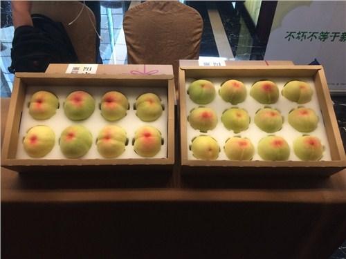 北京阳山水蜜桃供应