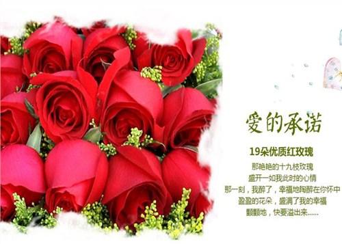 情人节玫瑰配送,玫瑰