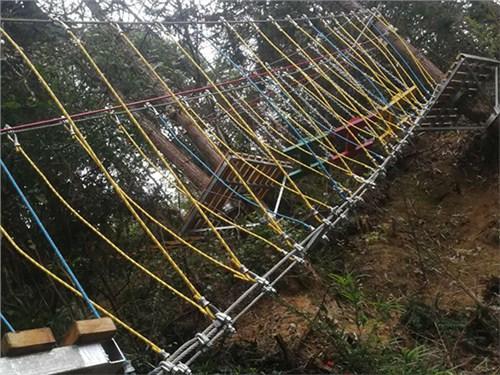 陕西丛林穿越优质供应商,丛林穿越