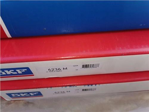 SKF1205,skf