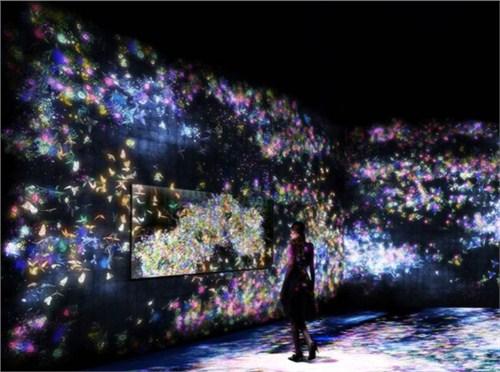 贵州餐厅投影光影餐厅哪里好 上海音维电子科技供应「上海音维电子科技供应」