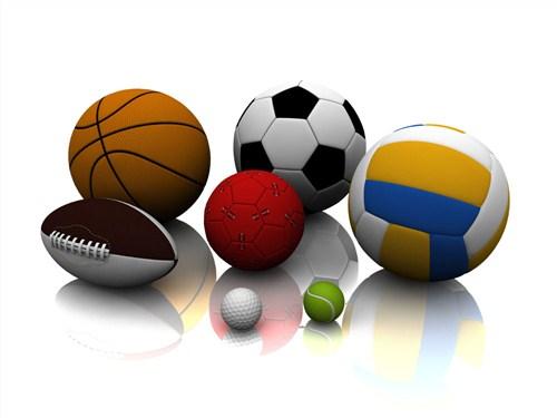 临沂自动体育用品值得信赖,体育用品
