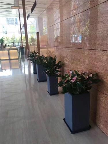 上海泽珐园林科技生长无限公司