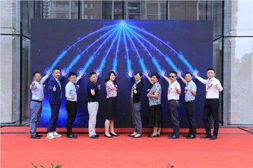 青山区创业者2019年青山杯创新创业大赛,2019年青山杯