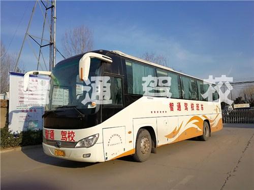 郑州考C5驾照 推荐咨询 智通驾校供应