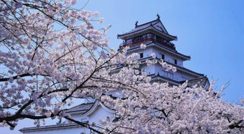 连云港销售日本留学条件 推荐咨询「上海英萃文化传媒供应」