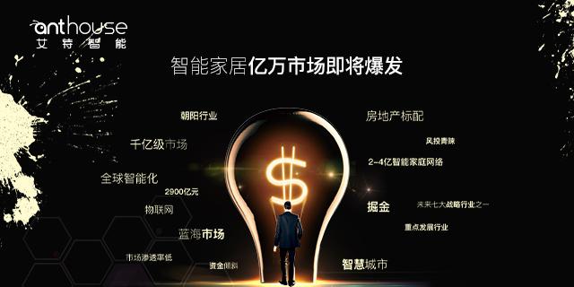 舟山智能家居加盟多少钱 深圳市艾特智能科技供应