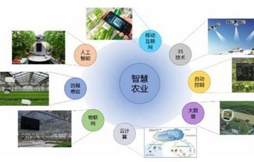 江西口碑好智慧农业优选企业 欢迎咨询「南京大邦智慧农业科技供应」
