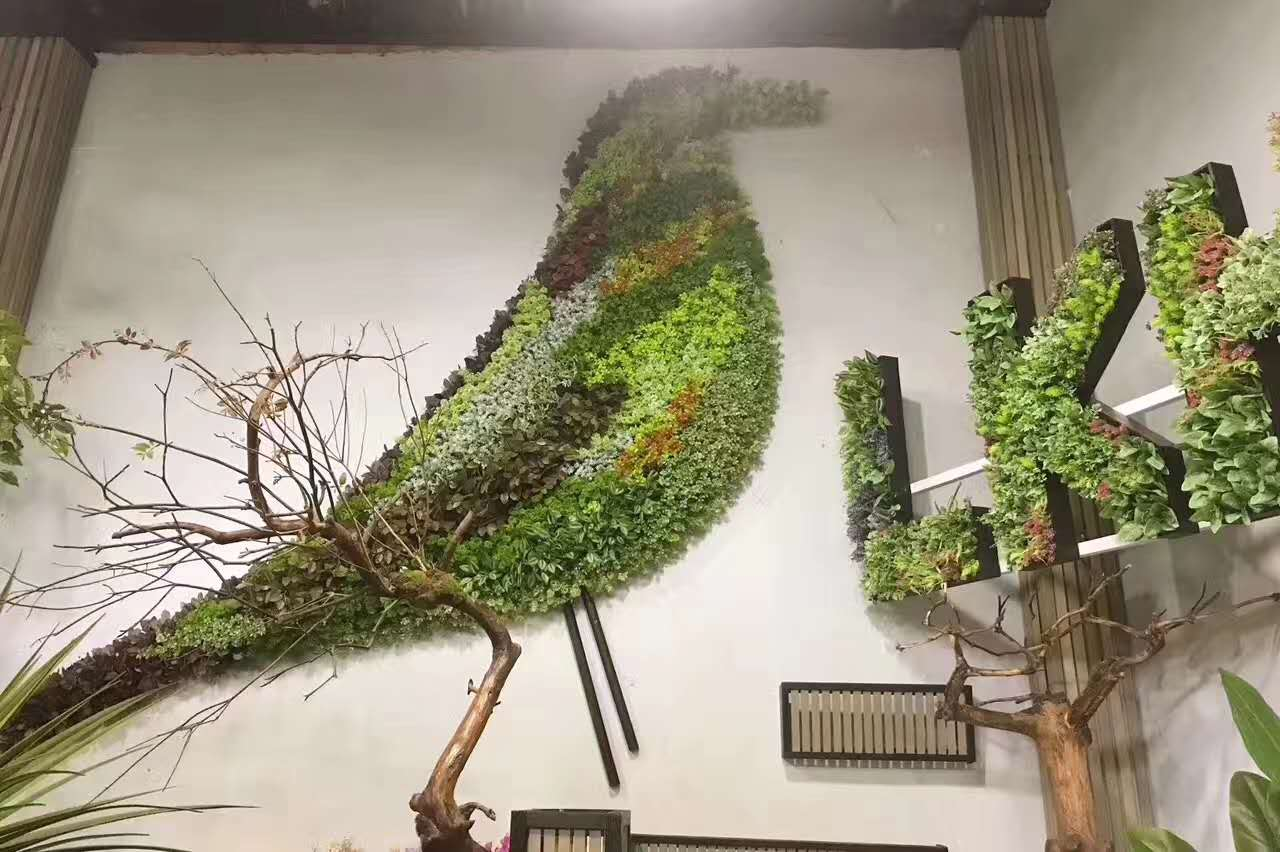 苔藓绿植墙安装视频,绿植墙