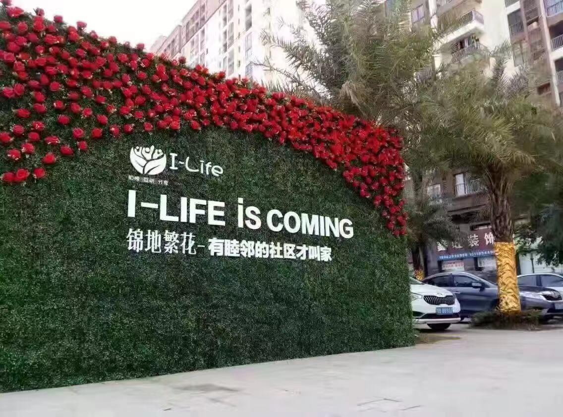 連云港綠植墻 創造輝煌「相城經濟技術開發區御景源裝飾材料供應」
