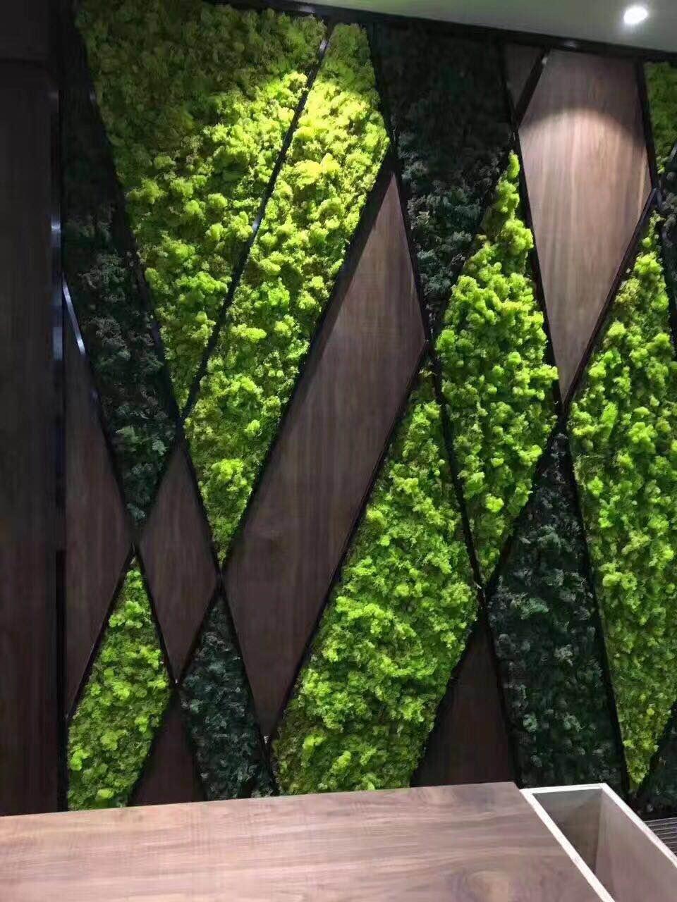 盐城植物墙绿植墙