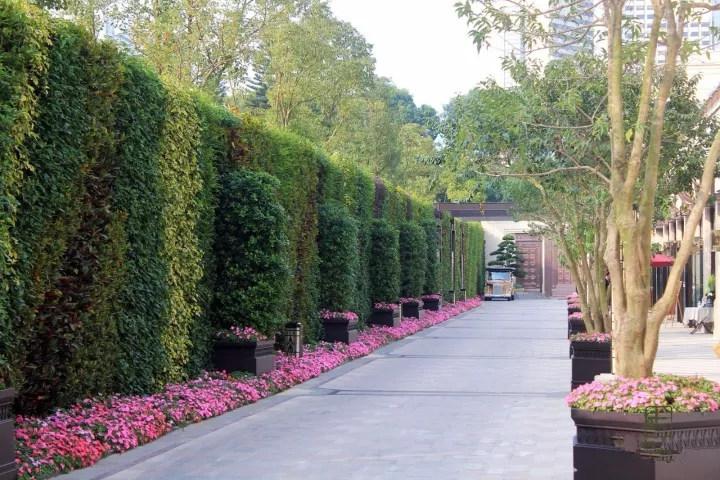 玄关放绿植墙图片大全,绿植墙