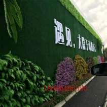 扬州背景植物墙,植物墙