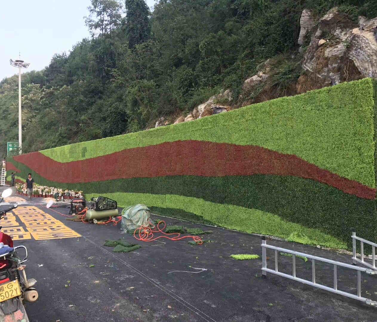 陕西植物墙价格咨询,植物墙