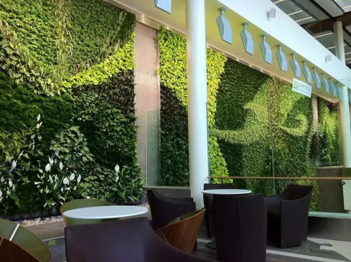 无锡花园植物墙,植物墙