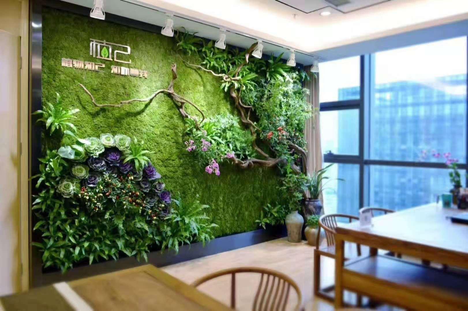 湖州公司前台绿植墙