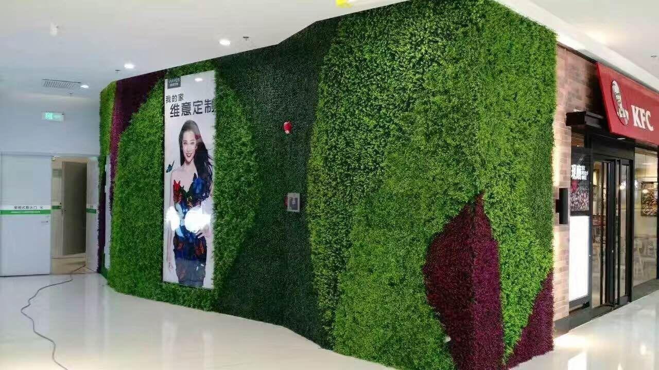 连云港植物墙绿植墙,绿植墙