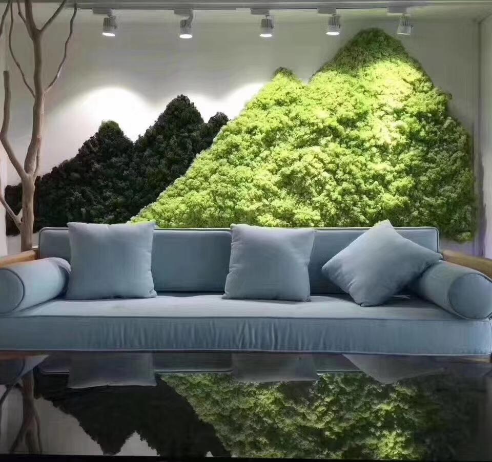 南通塑料花草装饰绿植墙,绿植墙