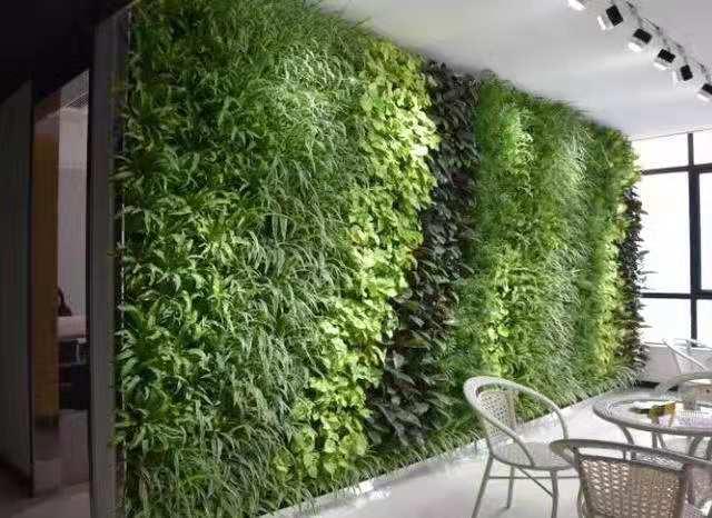 徐州室内绿植墙,绿植墙