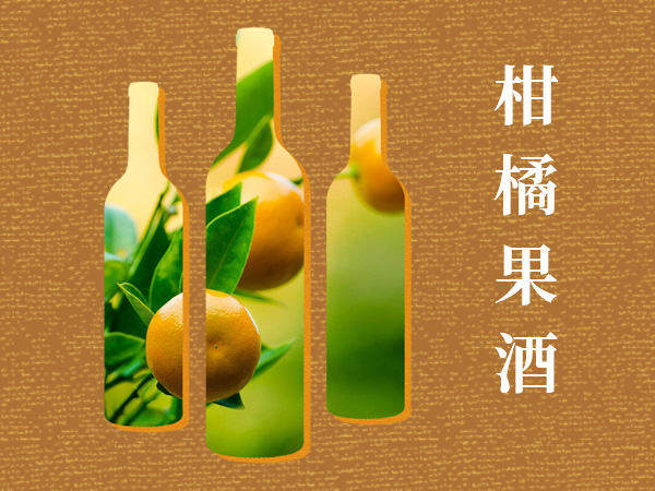 邵阳果酒 真诚推荐 柳州市橘之宝保健食品科技供应
