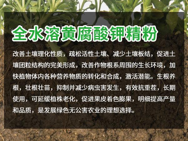 威海黃腐酸鉀粉價格 歡迎咨詢「廣西桔誠生物供應」